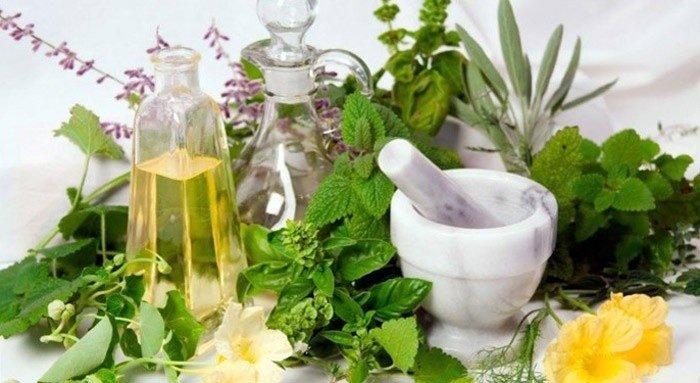 Травы для похудения - что можно купить в аптеке для эффективного очищения, какие сборы сжигают жир, мочегонные травы, помогающие похудеть, итоги в килограммах за месяц и отзывы о результатах
