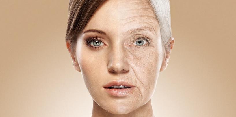 Омоложение организма остановка процессов старения