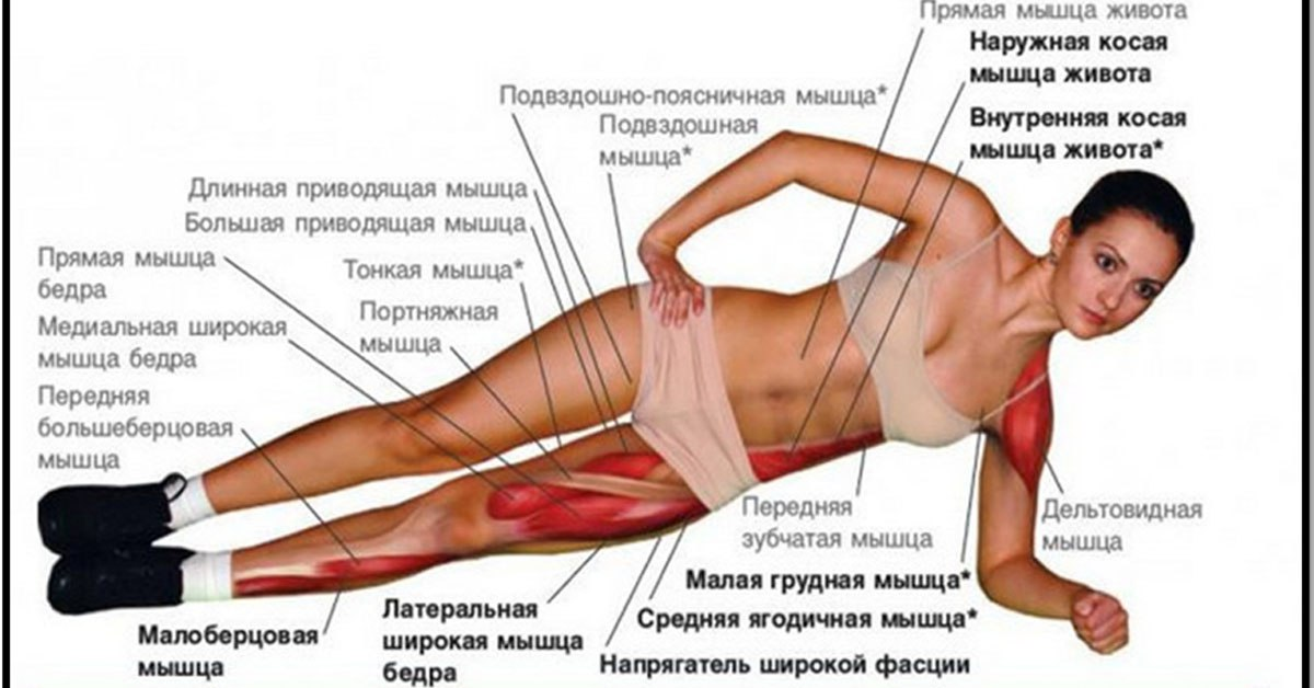 Упражнение планка для похудения инфографика | sport | ejercicios.